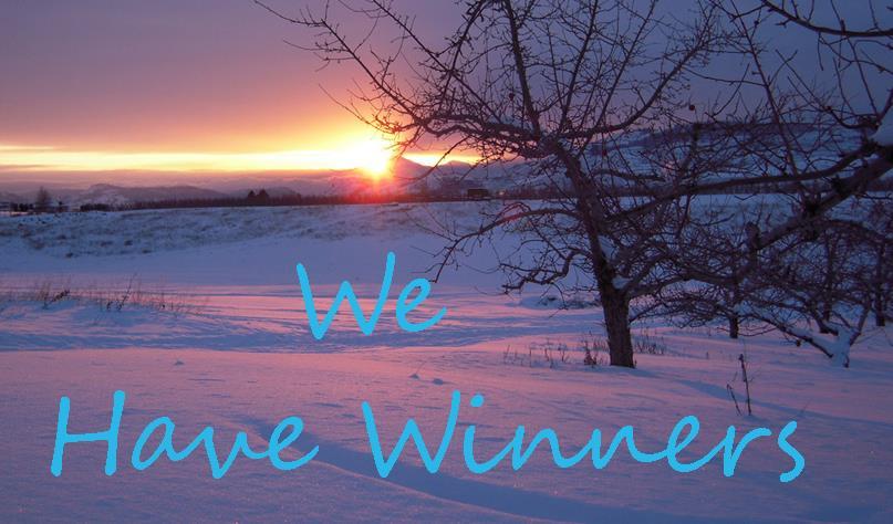 We Have Winners 5