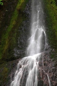 Mid-section_of_Marymere_Falls_Olympic_National_Park