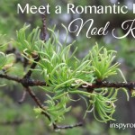 romantic hero, wild mint tea, valerie comer