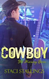 Cowboy New 2-2014