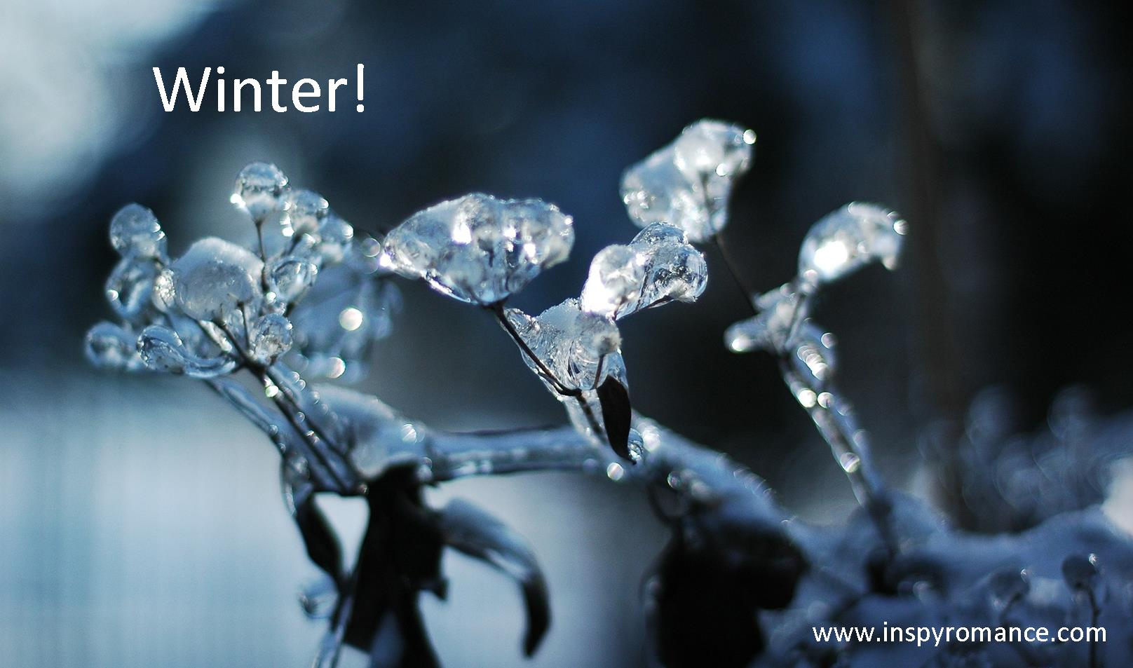 Winter cover pic
