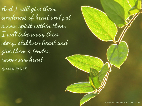 Image from inspirational romance author Autumn Macarthur- new green leaves with Bible verse Ezekiel 11:19