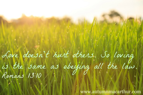 Image of organic rice field with dew drops during sunset via Bigstock, plus Bible verse