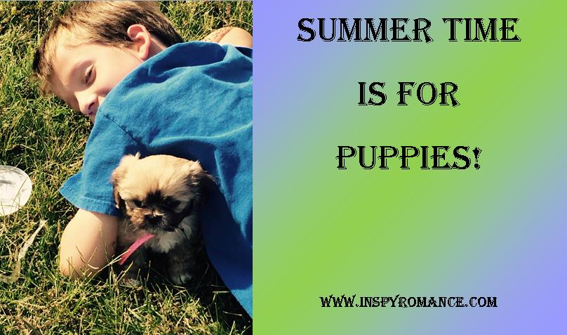 Summer time for puppies
