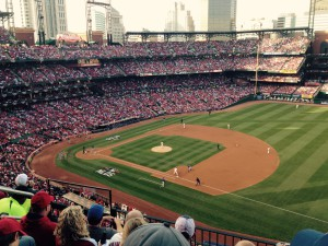 My husband's view for the Cardinals-Cubs game Saturday