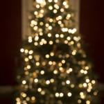PERCHANCE TO DREAM Christmas Tree