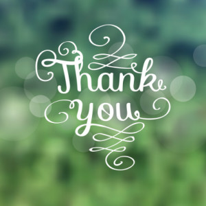 Thank you message made of growing branches
