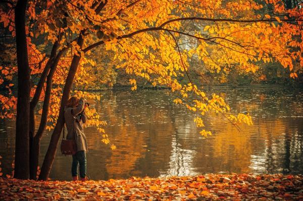 fall photographer unsplash