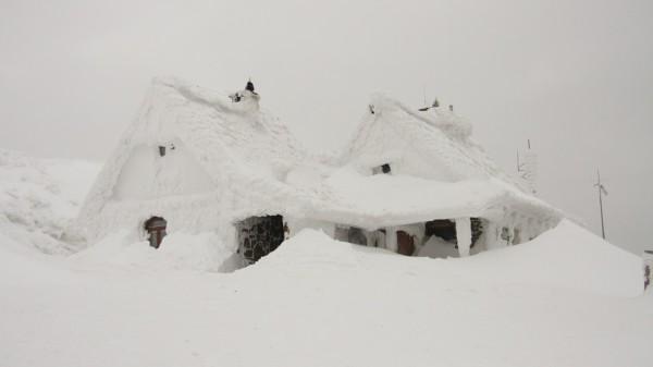 snowpocalypse unsplash