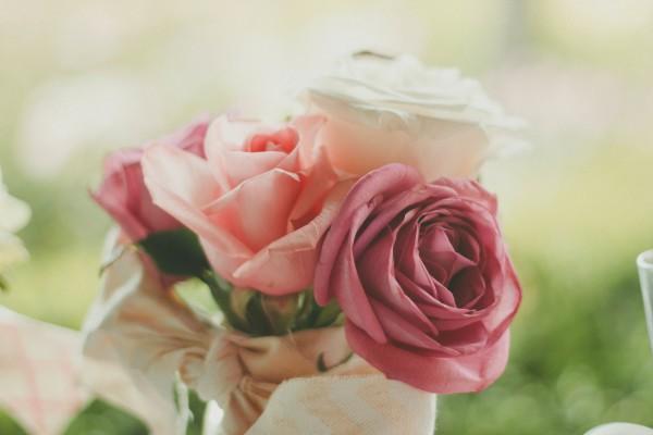 roses unsplash