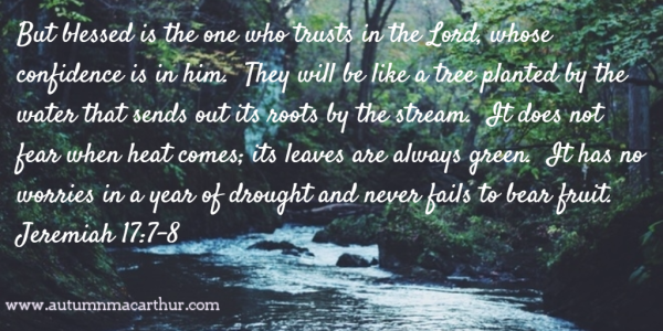 Image of trees by a river with Bible verse Jer 17:7-8, by Christian romance author Autumn Macarthur on Inspy Romance