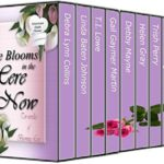 Love Blooms in the Here and Now (boxed set)