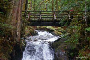 creek under bridge