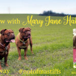 Interview with Mary Jane Hathaway and #Giveaway
