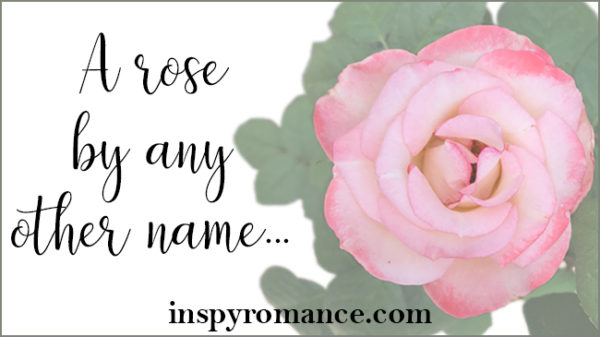 rose can be a new pink by any kind of some other name
