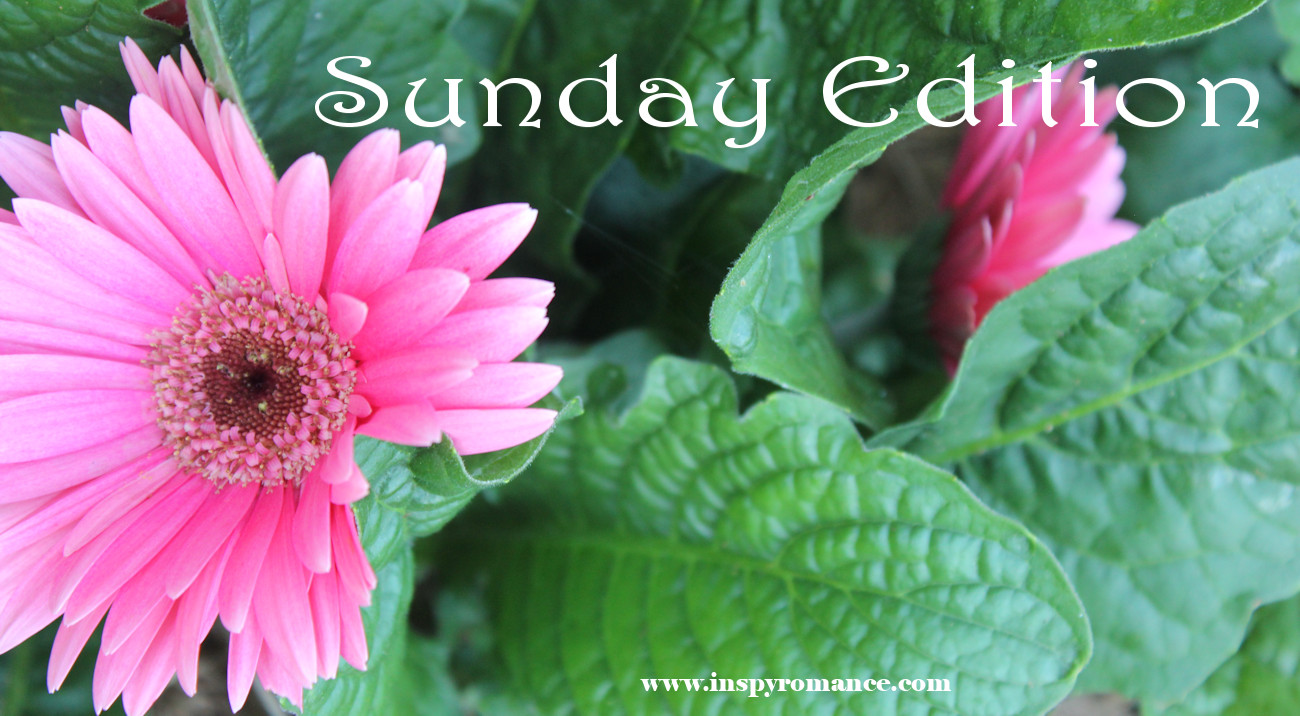 Sunday Edition 6-25