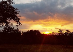 Sitting on my porch as the sun greets the Texas hills - Jolene Navarro