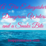 A Fire Extinguisher, Dangerous Waters, and a Snake Bite
