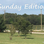 Sunday Edition – 10/1/17