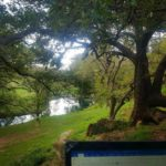 Writing next to the Frio River at the Frio Springs Cabins, Leakey Texas