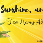 Life, Sunshine, and Too Many Alligators