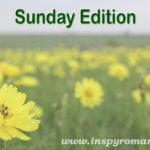 Sunday Edition 04/29/18