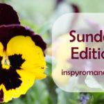 Sunday Edition 04/15/18