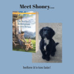 Meet Shoney… before it's too late! and #giveaway