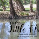 It's the Little Things by Melanie D. Snitker
