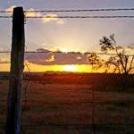 Texas Sunset - Jolene Navarro