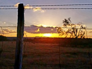 Texas Sunset - Jolene Navarro