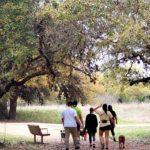 Joshua Springs Park & Preserve.