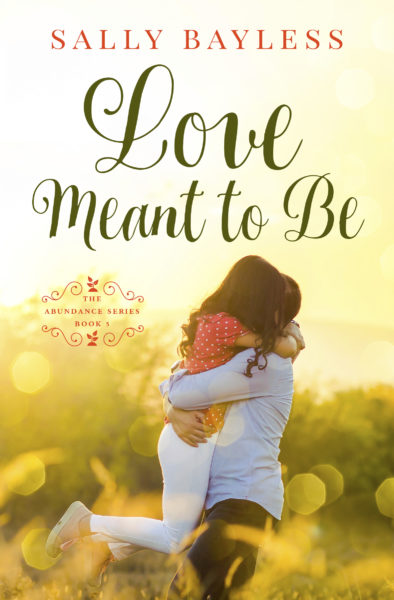 Cover of Love Meant to Be
