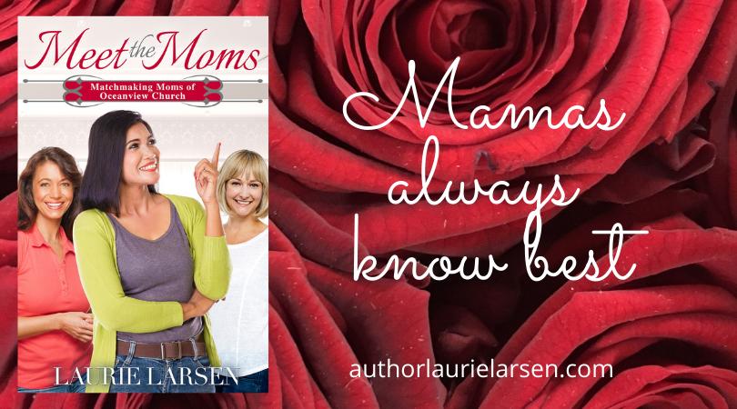 Meet the Moms by Laurie Larsen